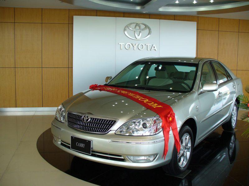 Thương hiệu Toyota màu trắng nổi bật trên ốp gỗ màu vàng