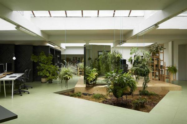 Thiết kế nội thất văn phòng theo xu hướng gần gũi với thiên nhiên