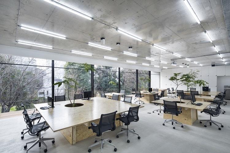 Văn phòng mở cũng là một không gian làm việc thoải mái cho nhân viên