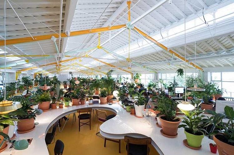 Không gian làm việc xanh là xu hướng thiết kế văn phòng hiện đại