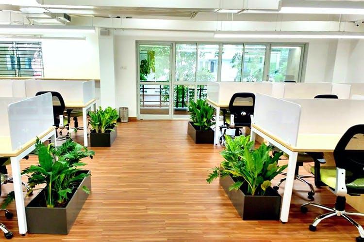 Những mảng xanh giúp văn phòng thân thiện hơn