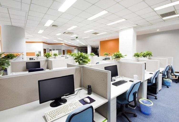 Không gian xanh giúp văn phòng thêm nổi bật