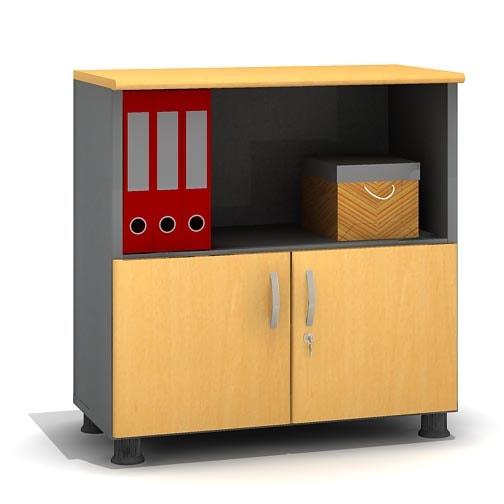 Tủ tài liệu dáng thấp cho văn phòng