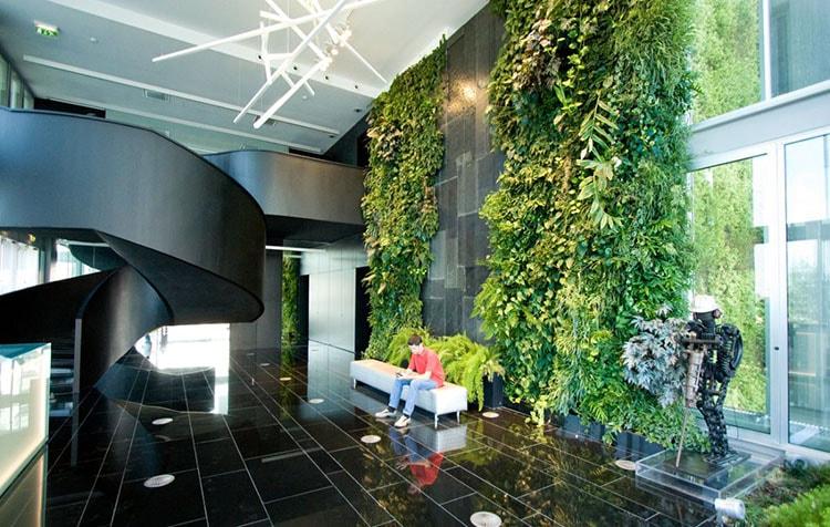 Trang trí văn phòng làm việc bằng cây xanh
