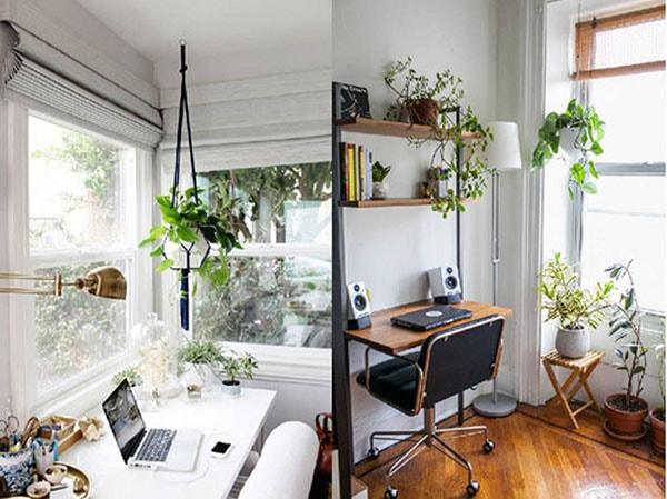Thiết kế phòng làm việc tại nhà với không gian xanh