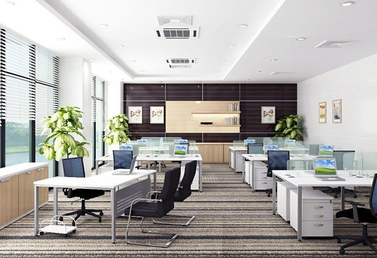 Trang trí nội thất văn phòng bằng cây xanh