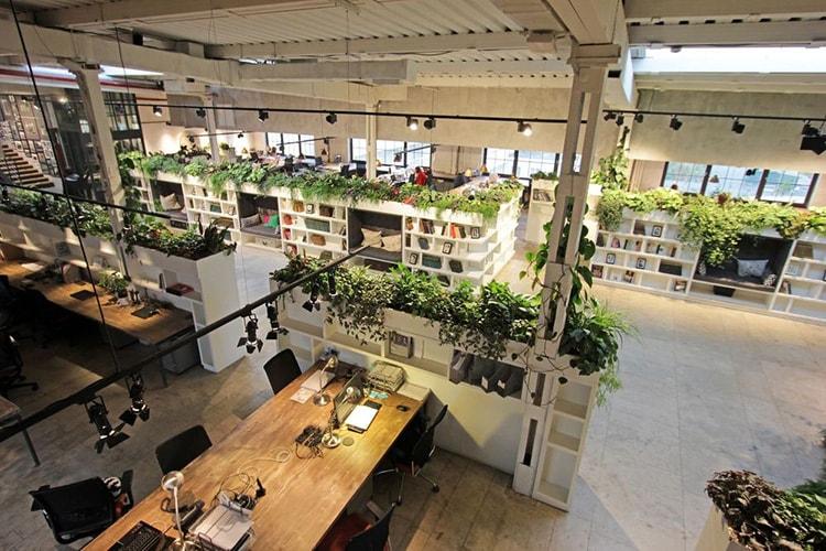 Trang trí nội thất văn phòng với không gian xanh