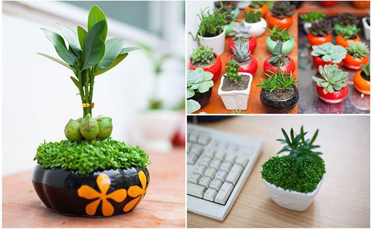 Trang trí bàn làm việc tại văn phòng bằng những đồ dùng dễ thương